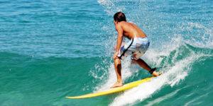surf header